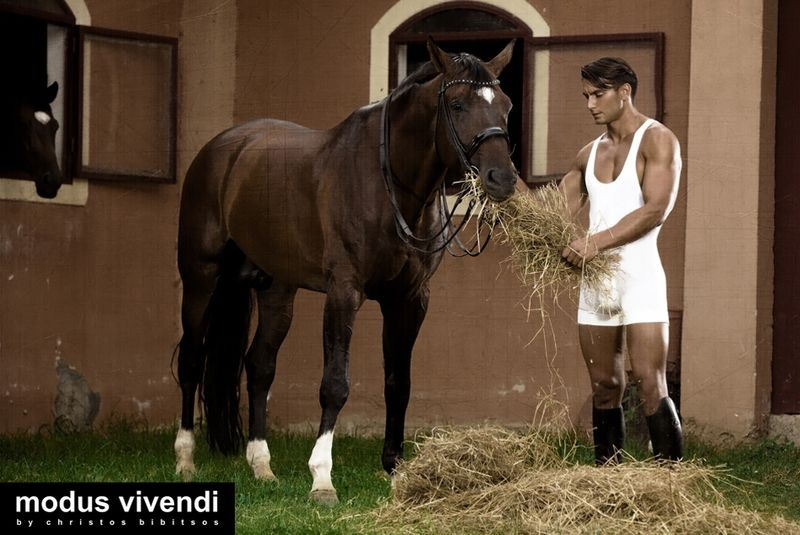 ModusVivendi_stablecollection2013_04